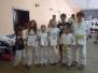 Ogólnopolski Turniej Judo Dzieci i Młodzików - Lipno, 22.06.2013 r.